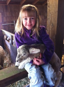 Annalise and lamb
